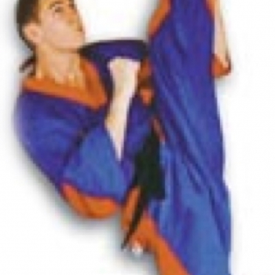 Matt Fiddes vertical kick